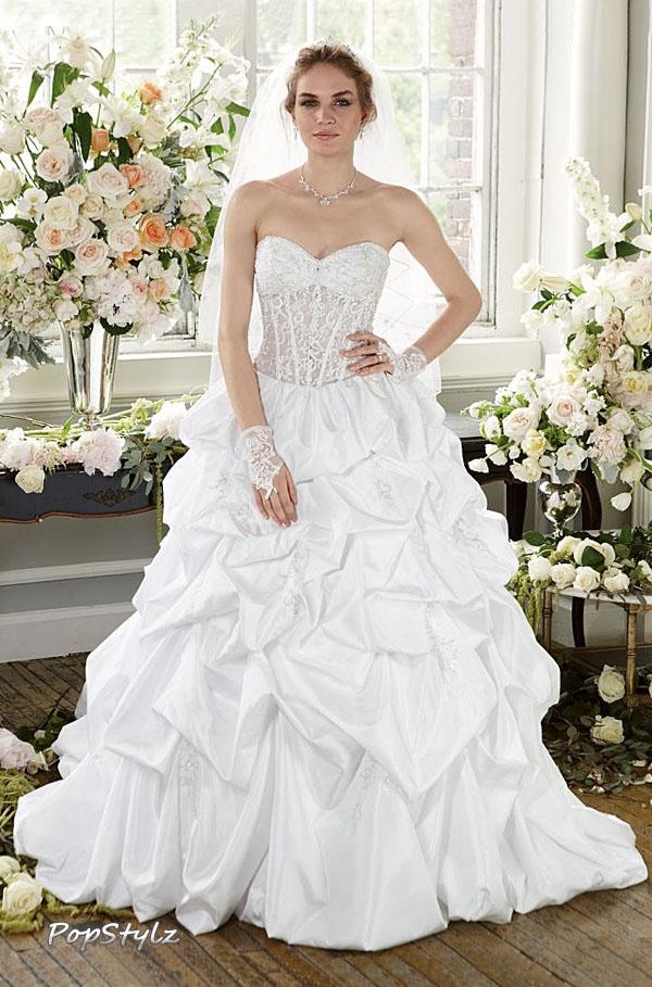 David's Bridal Gown - Pick-Up Illusion Bodice Dress