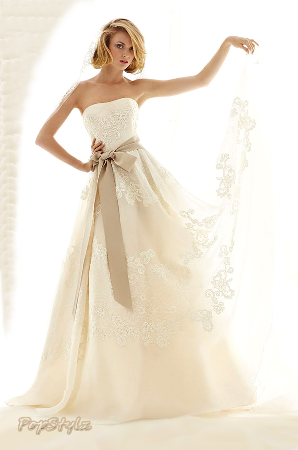David's Bridal Gown - Satin Organza & Antique Lace
