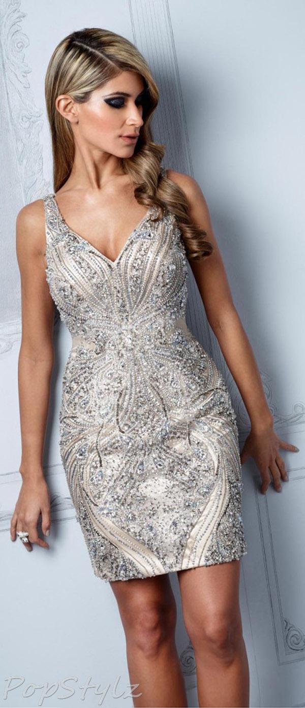 Terani Couture C2011 Evening Fall 2013 Dress