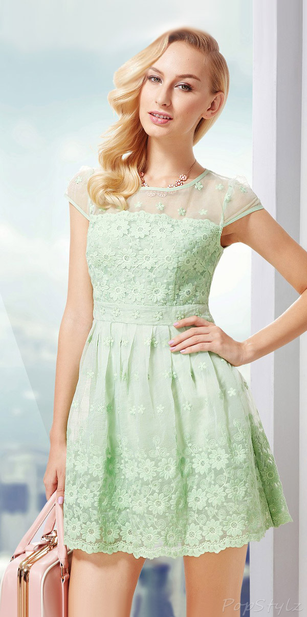 OSA Vintage Embroidery Lace Pleated Dress