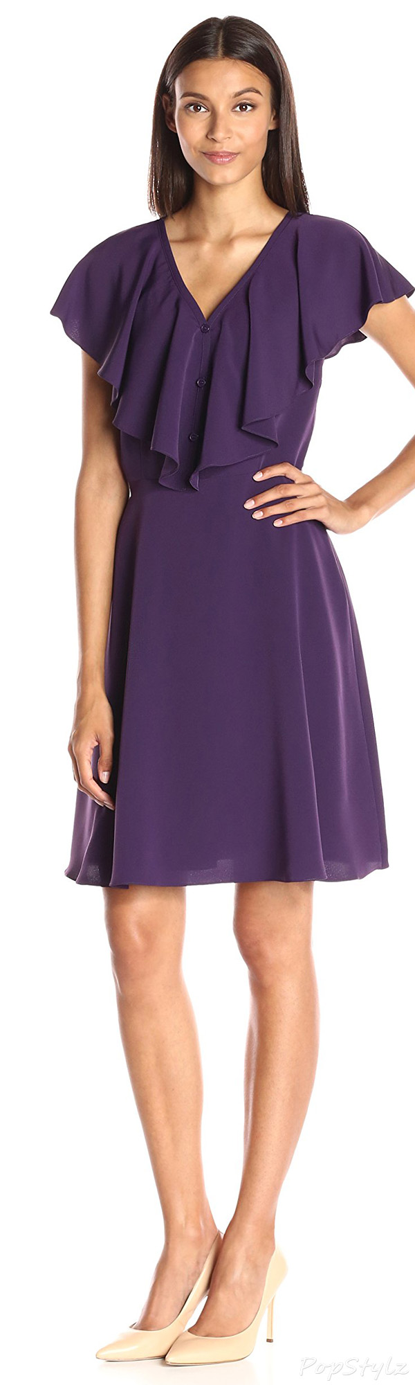 Lark & Ro Ruffled V-Neck Fit & Flare Dress